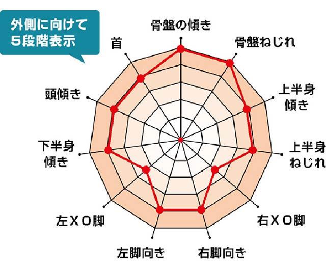 姿勢5段階チャート